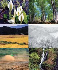 鵜川市野新田の豊かな自然
