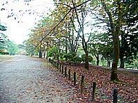 長岡悠久山公園
