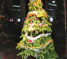 クリスマスそしてお正月