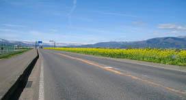 春の信濃路